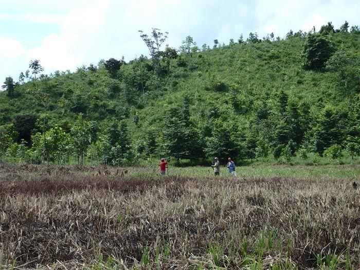 Famab Stiftung Wald